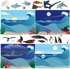 Vari scenari marini con animali