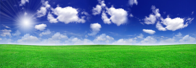Green field beautiful