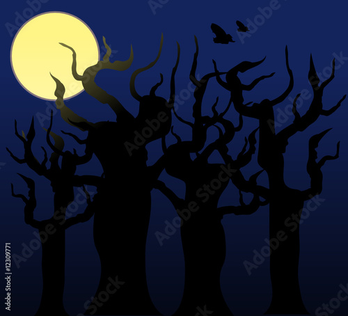 Trees in the night - vector image