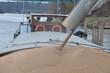 chargement de blé d'une péniche - 12315125