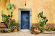 Charming rustin weather worn doorway in hot climate country - 12326976