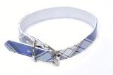 plaid dog collar on white background poster