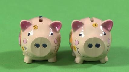 Sparschweine füllen