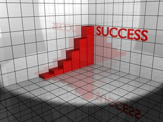 success diagram on raster 3d