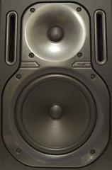 Audio Monitor Speaker