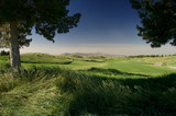 golf fairway with blue sky poster
