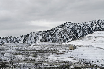 snow landscaspe