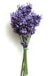 Lavendelstrauss