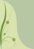 spring background - green