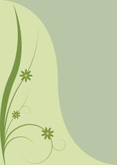 spring background - green