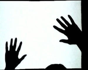 Hands Shadow Show