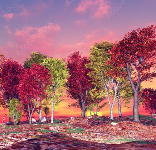 Autumn landscape - 12381763
