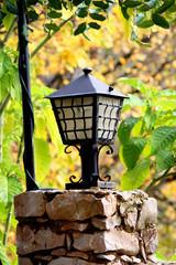 Streetlight and leafs