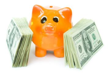 money with piggy bank