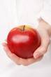 Young female hand holding red apple