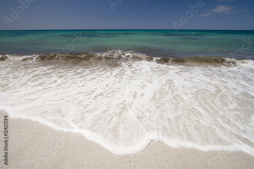 tropical white sand beach with turquoise water