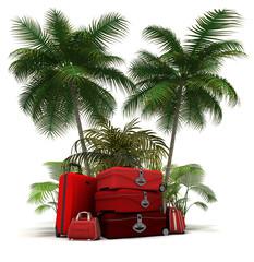 Pack voyage valise