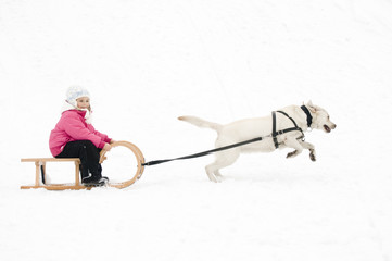 Winter sledding with dog
