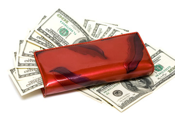 wallet with one hundred dollars