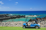 Fototapety Golf cart at a beach resort in Hawaii