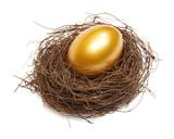 Gold egg - 12457744