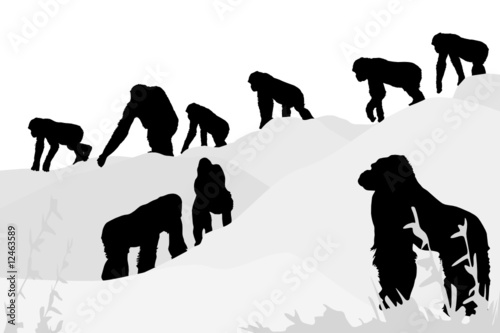 vector illustration of gorillas leaving