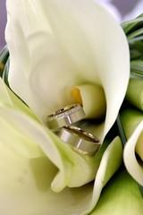 Ringe in der Blume