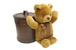 Old case with teddy bear isolated