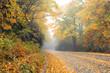Autumn and Blue Ridge Parkway