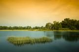 Sunseting at Paya Indah Wetlands, Malaysia poster