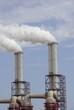 Incineration industry
