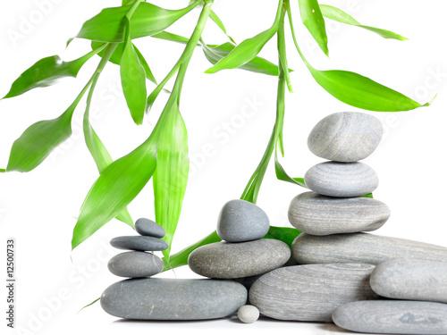 stos-kamieni-do-masazu-z-zielonymi-liscmi-na-bialym-tle