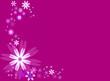 Frise fleurs roses, parme et blanches sur fond violet
