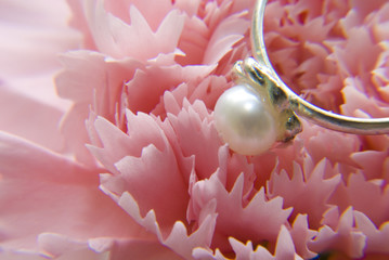 Pearl ring on carnation flower