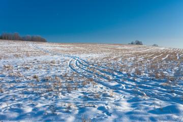 Winter Field Road