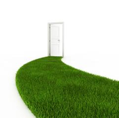 Open door with grass footpath