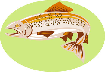 Spotted trout
