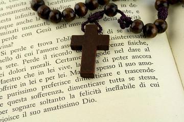 rosario sul libro