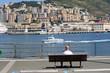 landscape of genova's harbour