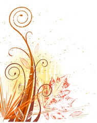 Vector grungeillustration of autumn foliage design.