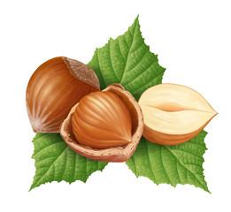 Hazelnuts 8