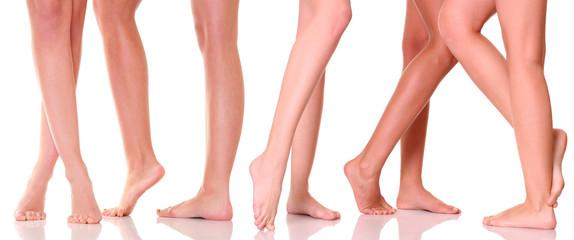 Five pairs female feet close up