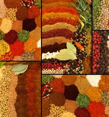 Spices and Herbs Collage