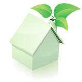 Maison blanche verte (reflet)