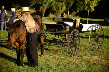 Horse wagon with driver