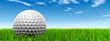 conceptual 3D golf ball on green grass over a blue sky