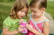 Two little twin girls find a dollar note inside a box
