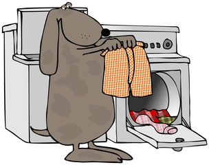 Dog Doing Laundry