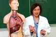 Cours d'anatomie - le poumon