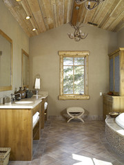 Antler Chandeliers in Bathroom